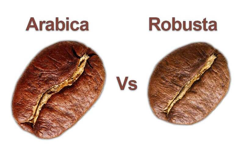 Robusta-beans-vs-Arabica-beans