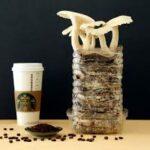 coffee-grounds-can-grow-mushrooms